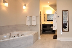Queen Jacuzzi Suite - Bath area